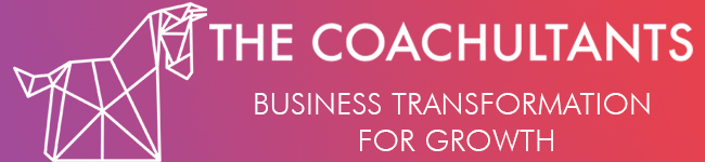 The coachultants: Επιχειρηματικό πλάνο - Branding - Executive Coaching